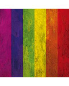 Distressed Rainbow Flag Roomba s9+ no Dock Skin