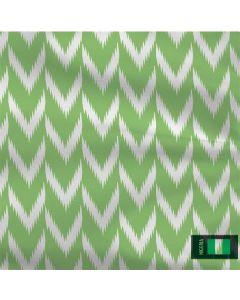 Nigeria Soccer Flag Roomba 880 Skin