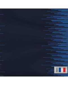 France Soccer Flag Roomba 880 Skin