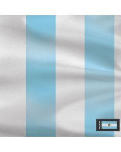 Argentina Soccer Flag Roomba 890 Skin