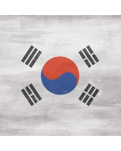 South Korean Flag Distressed Roomba e5 Skin