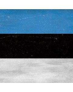 Estonia Flag Distressed Roomba i7+ with Dock Skin