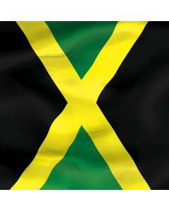 Jamaica Flag Roomba 880 Skin