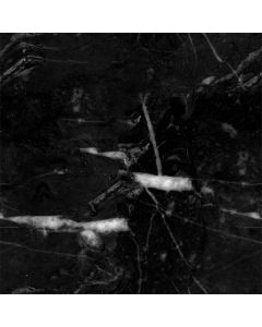 Stone Black Roomba s9+ with Dock Skin