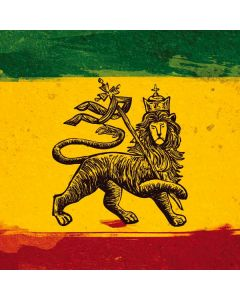 The Lion of Judah Rasta Flag Roomba i7+ with Dock Skin
