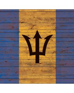 Barbados Flag Dark Wood Roomba i7+ with Dock Skin