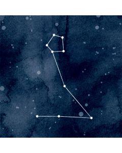 Pisces Constellation Roomba e5 Skin